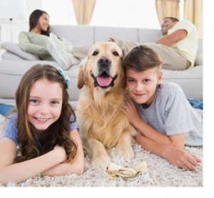 Portrait of happy siblings lying with dog while parents resting